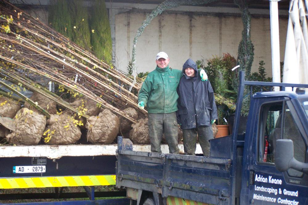 ... Winter Garden Grassing By Tree Surgery And Maintenance ...